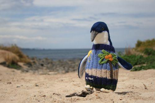 高龄老奶奶为菲利普岛企鹅编织千件毛衣