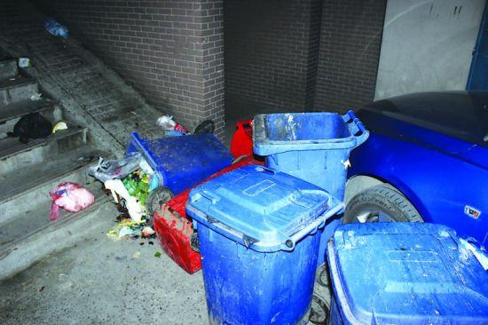 垃圾桶统一堆放在小区4