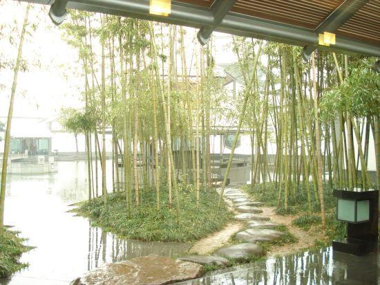 苏州博物馆内景