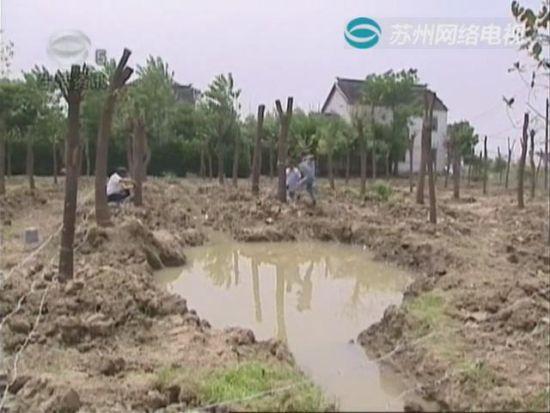 视频:种树挖沟留隐患 四岁男童不幸溺亡